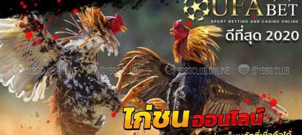 แทงไก่ชนufabet
